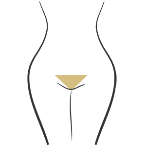 Bikini Waxing Cork Permanent Beauty